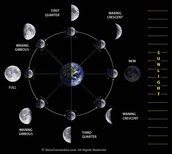 all the phases of the moon