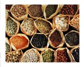 What types of legumes are there?