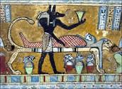 Mummifying  Process .