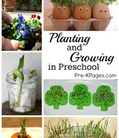 Planting and Growing in Pre-K