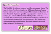 What the Neolithic Revolution Is