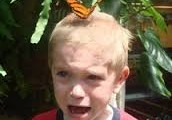 I'm scared of butterflies and moths.