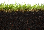 How Soil Is Formed-