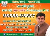BJP Krishan Gahlot Candidate in Vikaspuri