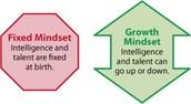 Growth vs. Fixed