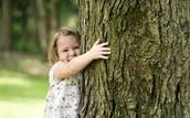 Abrazar un Árbol