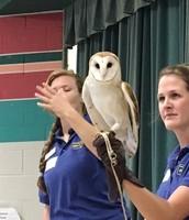 Dallas Zoo visits the 2nd graders!