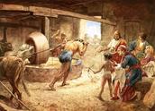 שמשון עובד במטחנה לאחר שניקרו את עיניו