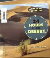 24 Hours In The Desert
