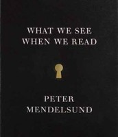 What We See When We Read: a phenomenology ; with illustrations