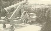 Quaker Cannon