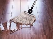 wet mop