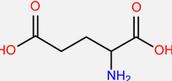 Glumatic Acid