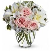 About Sarnia Florist