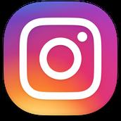 Reynolds Band Instagram