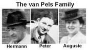The Van Peles