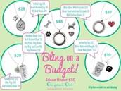 Budget Minded