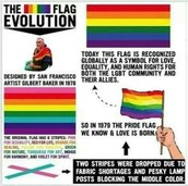 What Does LGBTQA Mean?