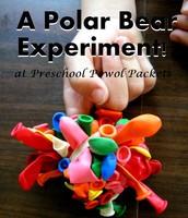 POLAR BEAR EXPERIMENT