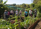 Finding Real-World Plans In permaculture training