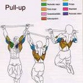 Pull- up