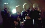 Don't miss the Cantina Band concert!