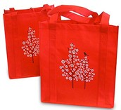 Grab Your Shopping Bag and We will See you Feb 6th!