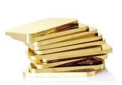 Gold Rush Info