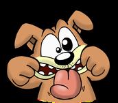 silly dog!!