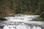 Bull Run Watershed: Portland's water source