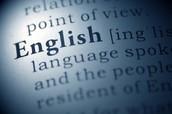 9. Use Standard English.