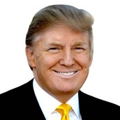IDEAL CANDIADTE-Donald Trump