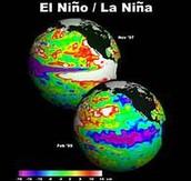 Comparison of El Nino and La Nina