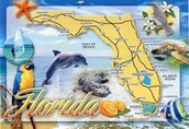the state Florida