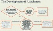 development of attatchment