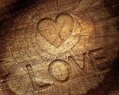 Wooden Love