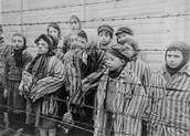 Children at Birkenau