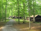 Our homely cabins!