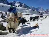 Climate of Mount Everest