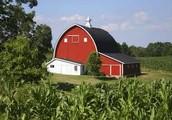 Decrease of Small Farms