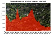 Graph of Recent Deforestation