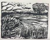 Daily Experiment- Marshland Print