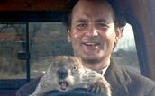 Groundhog Day Movie Trivia Question