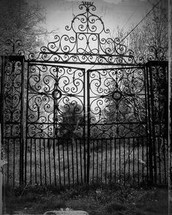 The Gate That Swallowed Men