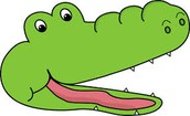 Gator Chomputation