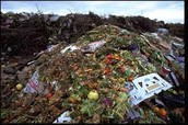 Food Waste/Other Wastes