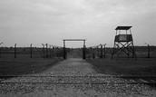 Auschwitz II, or Auschwitz-Birkenau