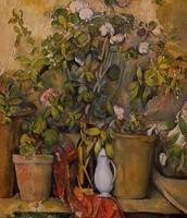 Pots en terre cuite et fleurs