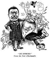 Roosevelt's Political Cartoon