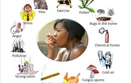 Triggers to Asthma Attacks